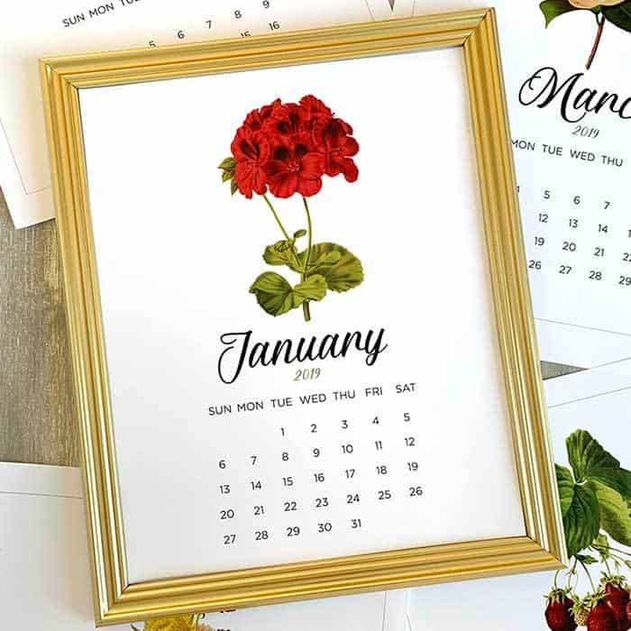 Printable Calendar January 2019 - Beautiful Vintage Floral Calendar by Living Locurto